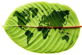 Verkoop duurzame producten stijgt zesde jaar op rij